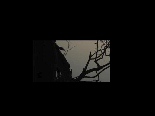 Asmalı Showcase #2 // Kök, She Past Away, Softa